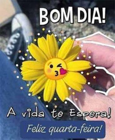 Bom dia feliz quarta, a vida te espera