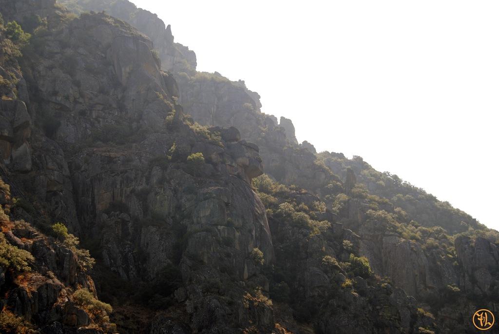 Formas en las piedras de las laderas del río Sil