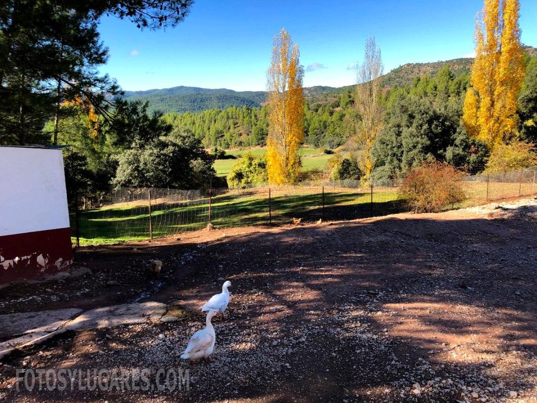 Exteriores del hotel Val de Pinares