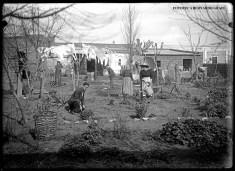 Vista desde el fondo de la casa vieja (aprox. 1915) - La Familia Monreal por Luis: su esposa Pierina, su madre Aurora Pnatín, Amparo e Higinio. (Podría ser Danial)