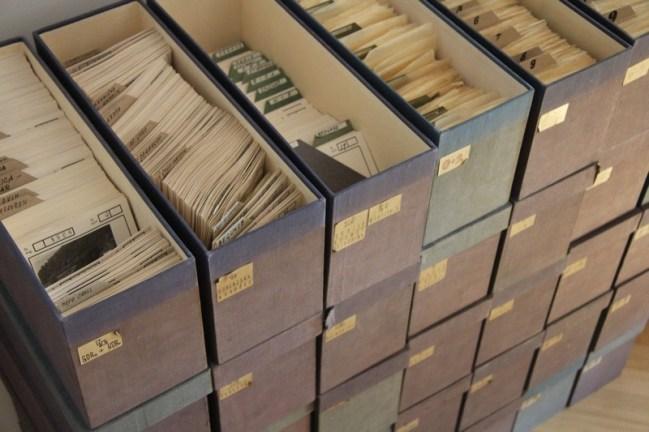 Vpogled v urejeno fotodokumentacijo podjetja Kompas d.d., foto: arhiv MNZS