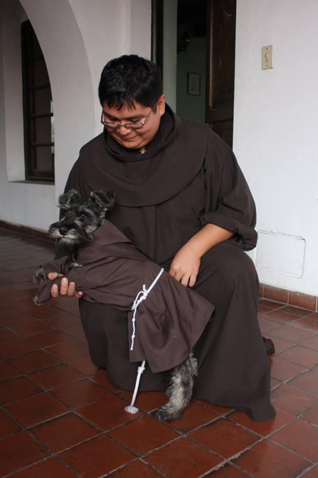 Собака-монах