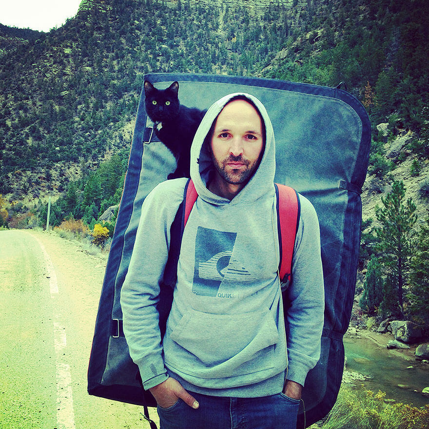Кошка-альпинистка