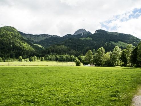 Wendelstein-6101501