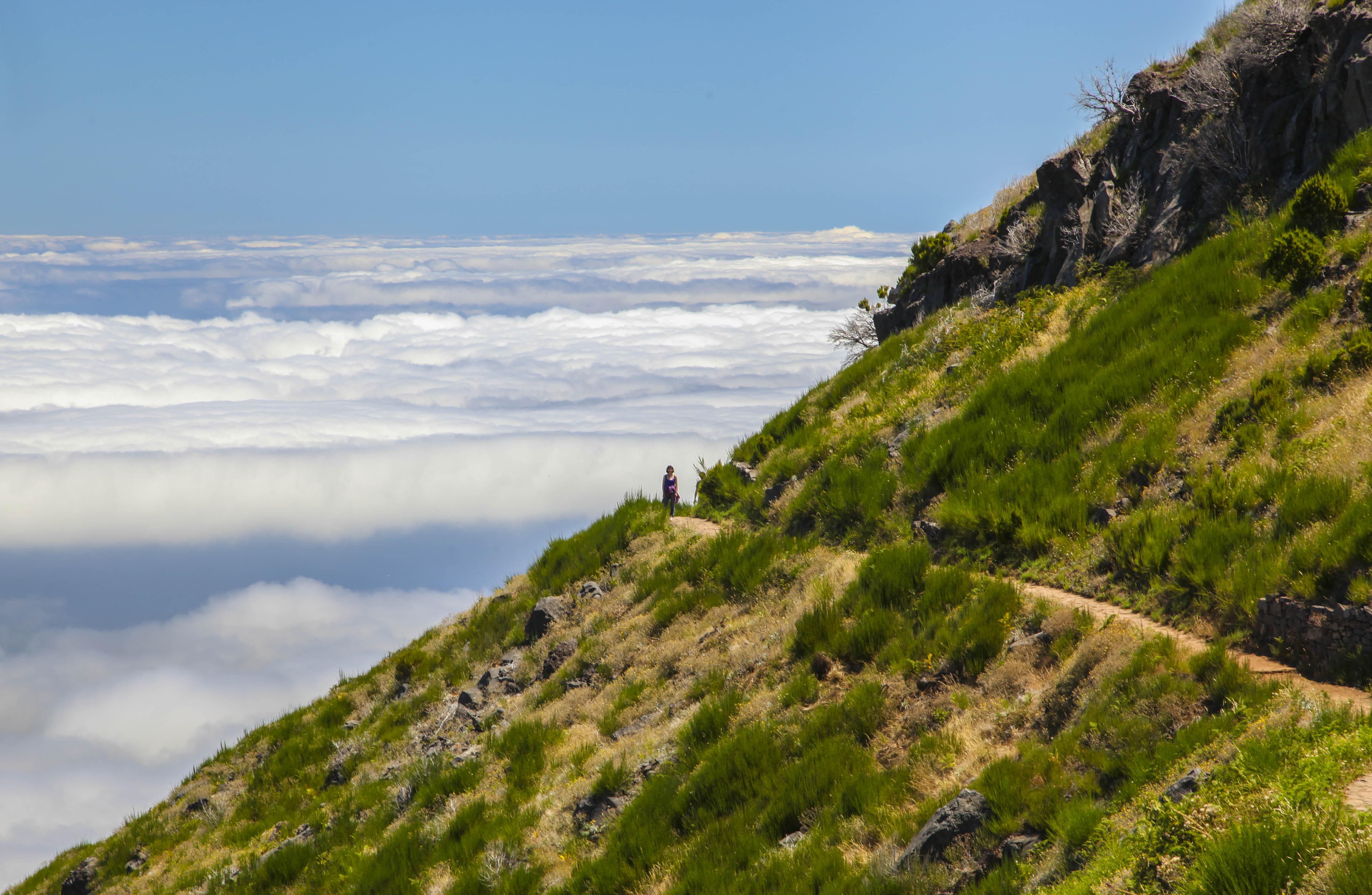 Madera i wejście na najwyższy szczyt Madery - PICO RUIVO. Przepiękny szlak w morzu mgieł