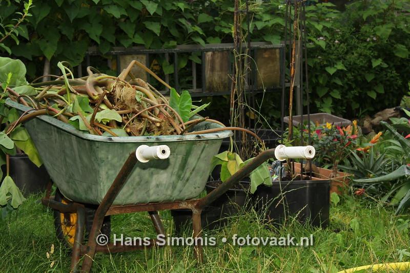 15081810_Buiten_De_Vlindertuin