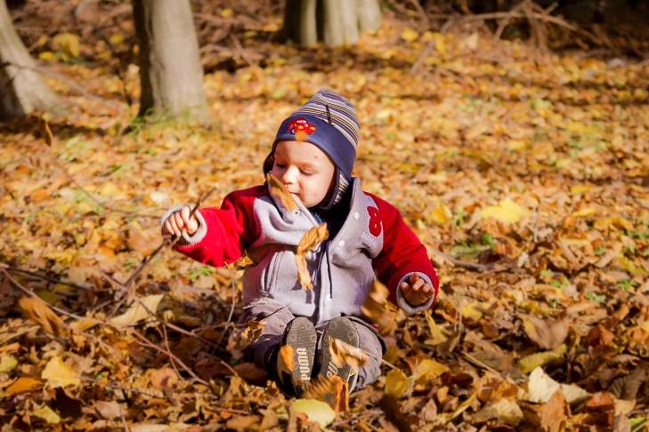 sedinta foto Toamna prin frunze