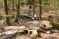 Door het bos al over de bruggetjes