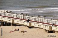 staketsel naar de pier