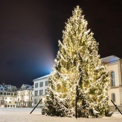Christbaum auf dem Klosterplatz