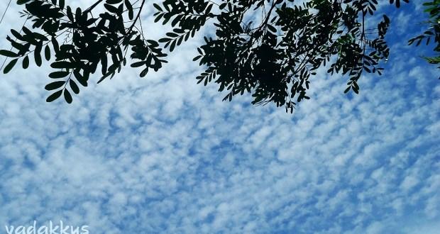 Cirrocumulous Clouds