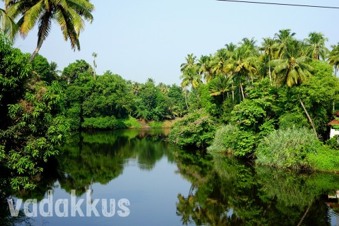 Kerala's Pretty-Postcard Picture Perfect Chalakudi River