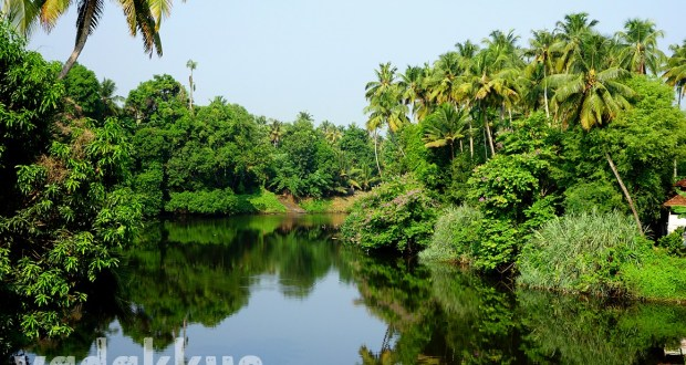 Photo showing natural beauty of the Chalakudi River in Kerala