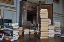 Auch in der Bibliothek sorgt Hannes für klare Verhältnisse