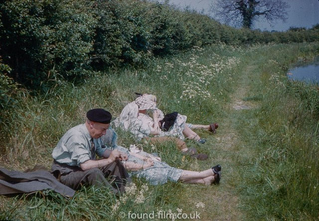 Resting in the hedgerow