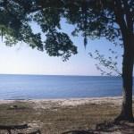 Tranquil calm beach scene
