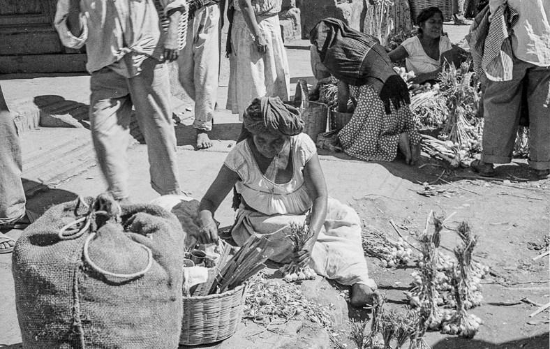 The Onion Seller
