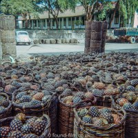 Baskets of Pineapple at the Lee Pineapple Company Singapore