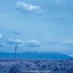 A lone telegraph pole