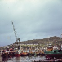 Mallaig Harbour in the 1960s