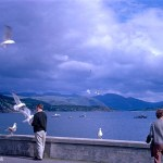 A Kodachrome slide of a man feeding birds next to a stone wall with Ullapool bay in the background.