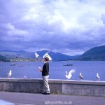 A Kodachrome slide from 1967 of a man feeding the birds at Ullapool