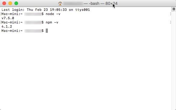 Node.js npm -vイメージです