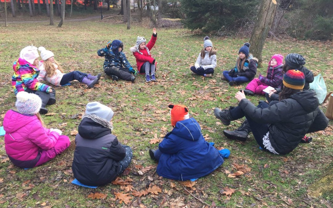 Forest and Nature School