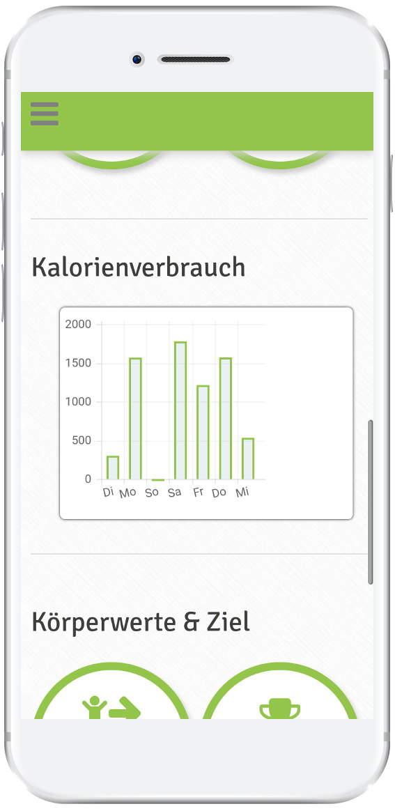 Kalorienverbrauchsstatistik Dashboard