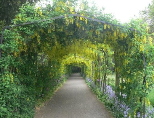 Gardens of Hampton Court Palace, England, UK