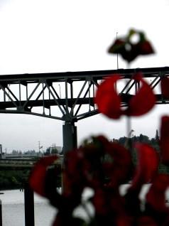 bridge (© 2010 Tisha Clinkenbeard)