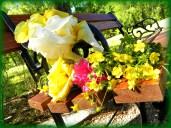 palette of flowers (© 2011 Tisha Clinkenbeard)