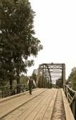 War Eagle Mill Bridge, outside of Rogers, AR