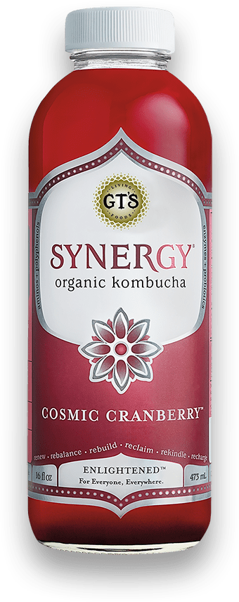 GT kombucha - cosmic cranberry