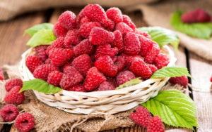 Полезные свойства малины, профилактика простудных заболеваний