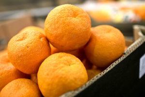 Апельсины: сорта и страны-производители