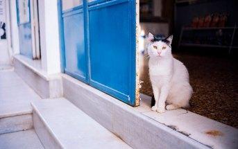 Когда начнется туристический сезон в Греции