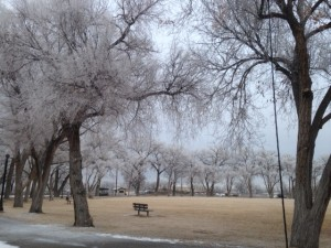Winter in Alamosa