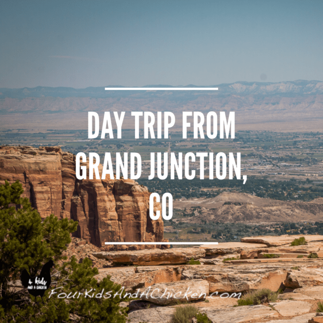 day trip from grand junction