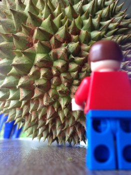 up against a durian