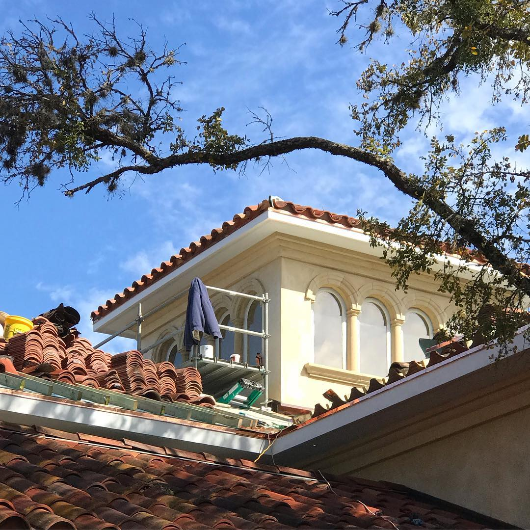 More blue sky's on our restoration project!! Love seeing everyone out working!