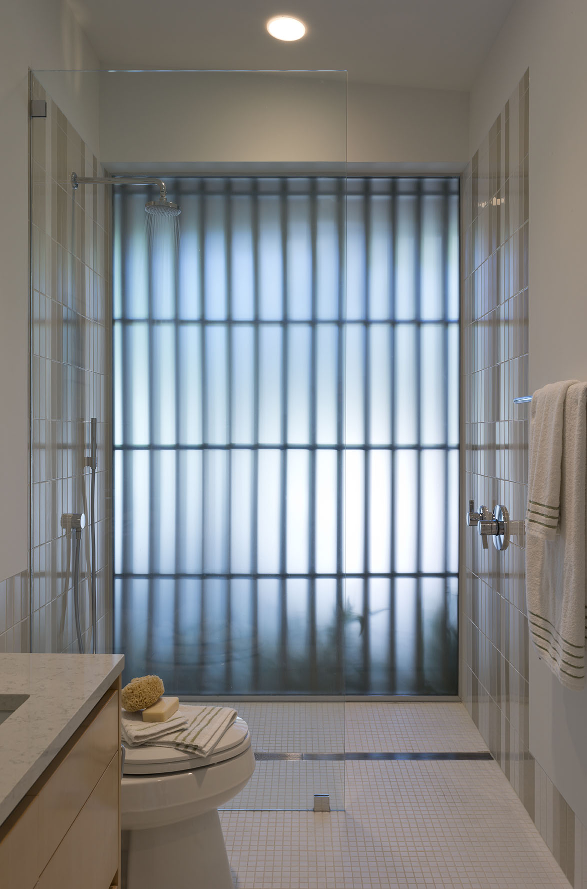 Frosted glass wall with Douglas fir privacy screen frame this guest shower.