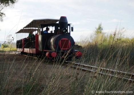 Emma die Lokomotive