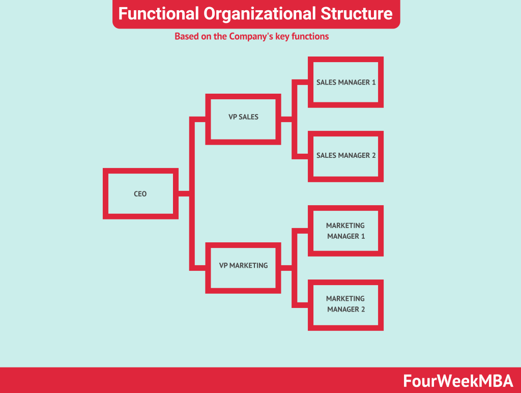functional-organizational-structure