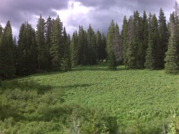 Between Muddy Pass and Rabbit Ears