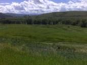 Near Granby