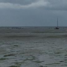 wandeling op de wadden zeebodem