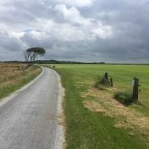 weg naast veld