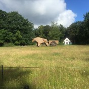 grote houten beeld met os en boerenkar voor huis
