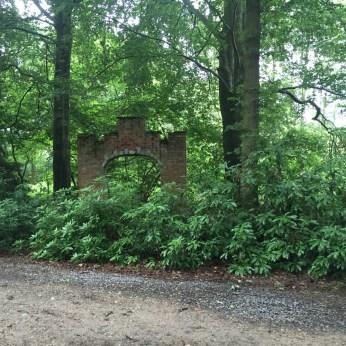 ruine in bos